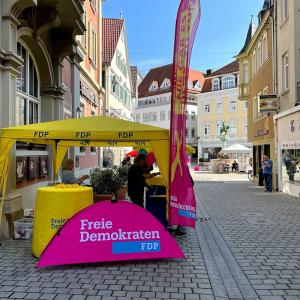 wahlstand06
